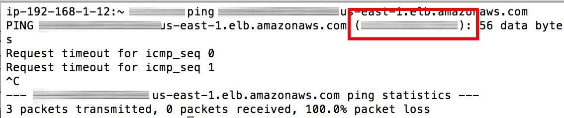 Load balancer IP address