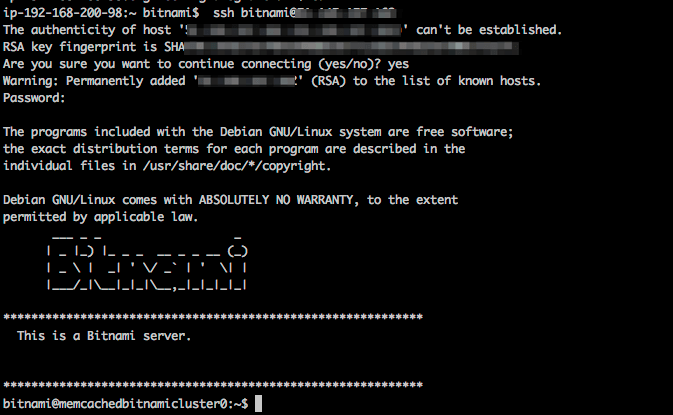 Connect through SSH to the primary node