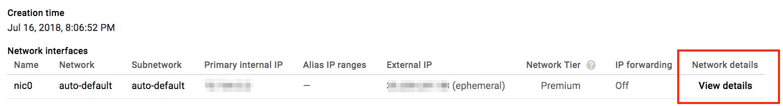 VM instance netork details