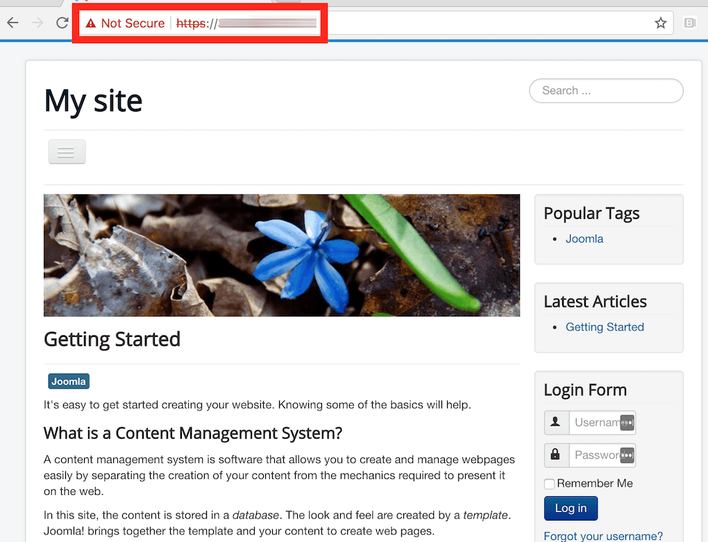 Joomla! site behind a self-signed TLS certificate